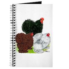 Frizzle Cochin Trio Journal