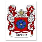 Trebnic Coat of Arms Small Poster