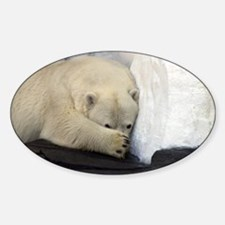 Polar Bear peeking out from behind his paw 2 Stick