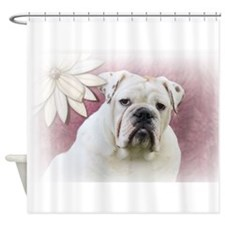 bulldog with pink background Shower Curtain