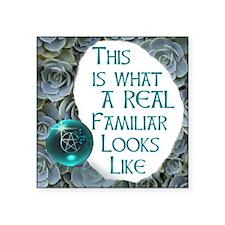 "Dragonball familiar.JPG Square Sticker 3"" x 3"""