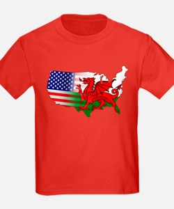 American Welsh Map T