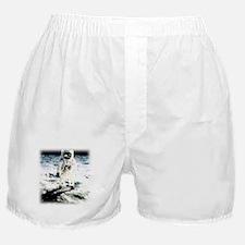 Road Boxer Shorts