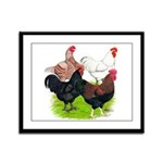 Heavy Breed Roosters Framed Panel Print