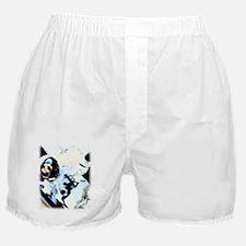 Hazard Pay Boxer Shorts