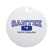 Santee South Carolina, SC, Palmetto State Flag, Gi