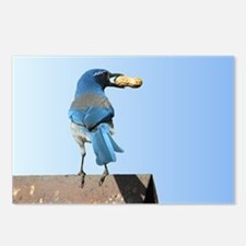 Cute Bluebird with Peanut Postcards (Package of 8)