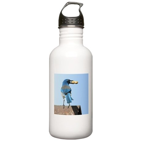 Cute Bluebird with Peanut Stainless Water Bottle 1