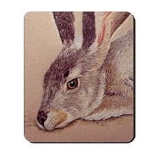 Jackrabbit Mousepad