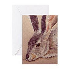 Jackrabbit Greeting Cards (Pk of 10)