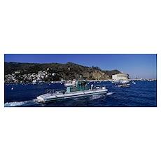 Boats in the ocean, Santa Catalina Island, Califor Poster