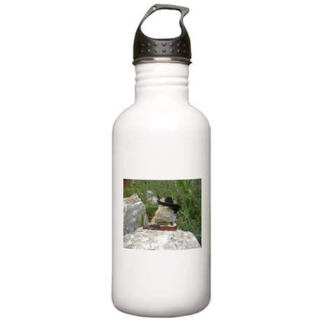 Musician Spiny the Lizard Stainless Water Bottle 1