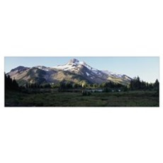 Mount Jefferson Willamette National Forest Marion  Poster