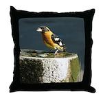 Pretty Black Headed Grosbeak Throw Pillow