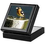 Pretty Black Headed Grosbeak Keepsake Box