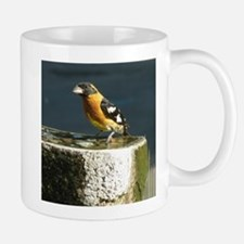 Pretty Black Headed Grosbeak Mug