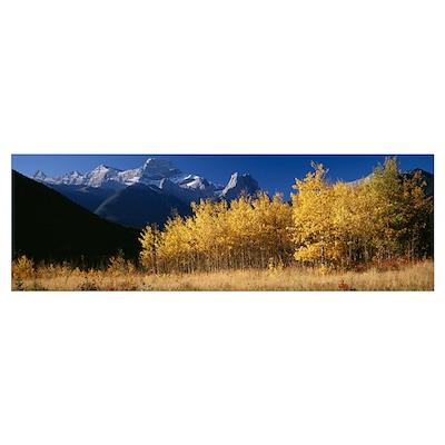 Mt Lougheed Alberta Canada Poster
