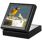Beautiful Black Headed Grosbeak Keepsake Box