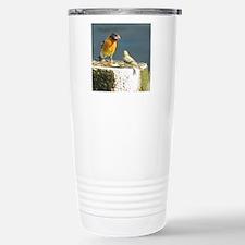 Beautiful Black Headed Grosbeak Travel Mug