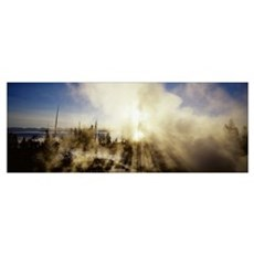 West Thumb Geyser Basin Yellowstone National Park  Poster