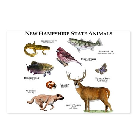 New Hampshire State Animals Postcards (Package of