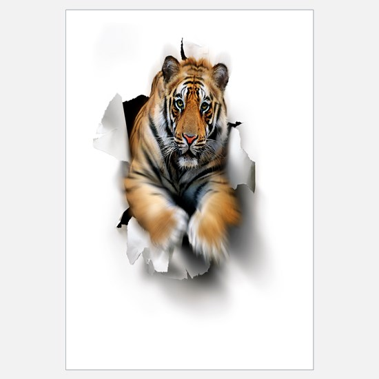 Tiger, artwork
