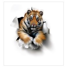Tiger, artwork Framed Print