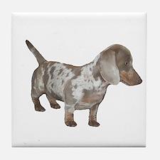 Speckled Dachshund Dog Tile Coaster