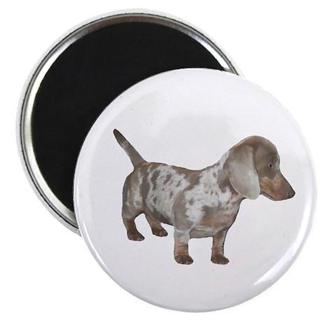 Speckled Dachshund Dog Magnet