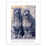 Twin Snow Leopard Cubs Small Poster