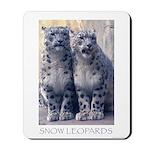 Twin Snow Leopard Cubs Mousepad