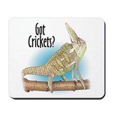 Chameleon Got Crickets? Mousepad