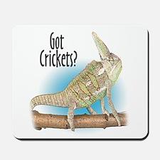 Chameleon Got Crickets? Mousepad