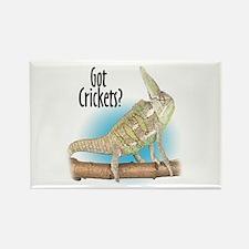 Chameleon Got Crickets? Rectangle Magnet