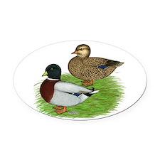 Grey Call Ducks Oval Car Magnet