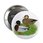 "Grey Call Ducks 2.25"" Button (100 pack)"