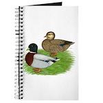Grey Call Ducks Journal