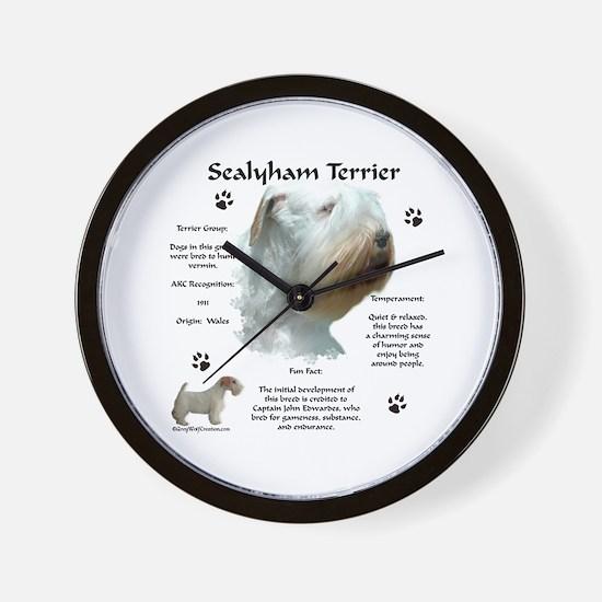 Sealy 2 Wall Clock