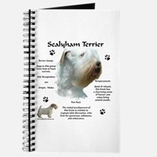Sealy 2 Journal