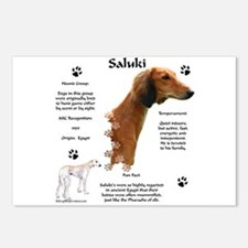 Saluki 1 Postcards (Package of 8)