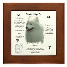 Sammy 4 Framed Tile