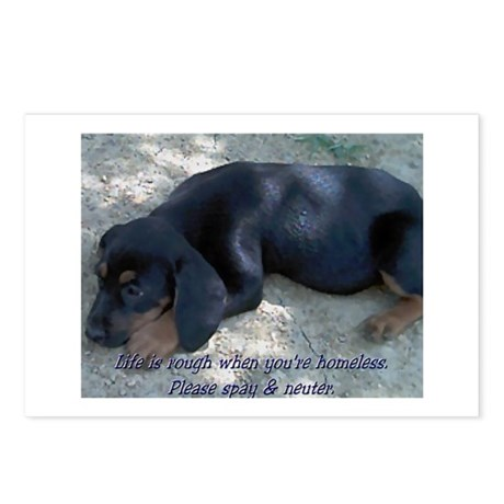 Homeless PuppyPostcards (Package of 8)