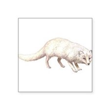 "ArcticFox.png Square Sticker 3"" x 3"""