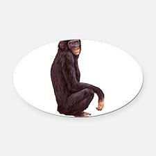 Bonobo.png Oval Car Magnet