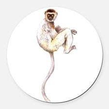 VerreauxSifaka.png Round Car Magnet