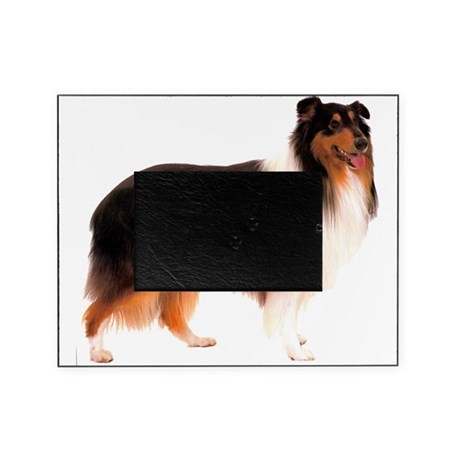 CollieBlackStriped.png Picture Frame