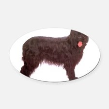 Briard.png Oval Car Magnet