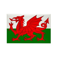 Fly the Welsh Dragon Rectangle Magnet (10 pack)