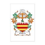 O'Hare Coat of Arms, Family C Mini Poster Print