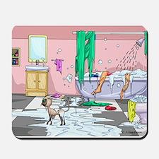 Never bathe a cat!! Mousepad